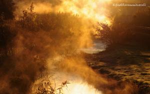 燃える朝霧