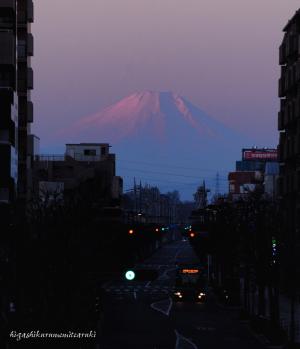元日 夜明けの富士