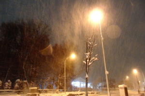 東京に降る雪