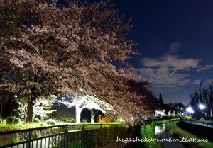 夜桜に流れ星