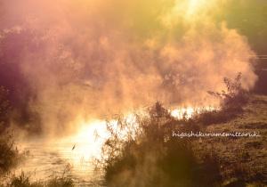 朝日に燃える川霧