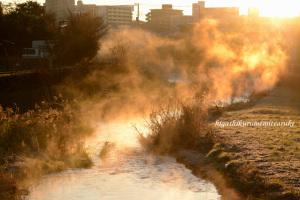 初日の出に染まる黒目川