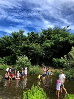 落合川の夏